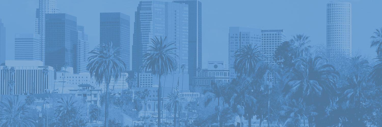 mfla-annual-report-background